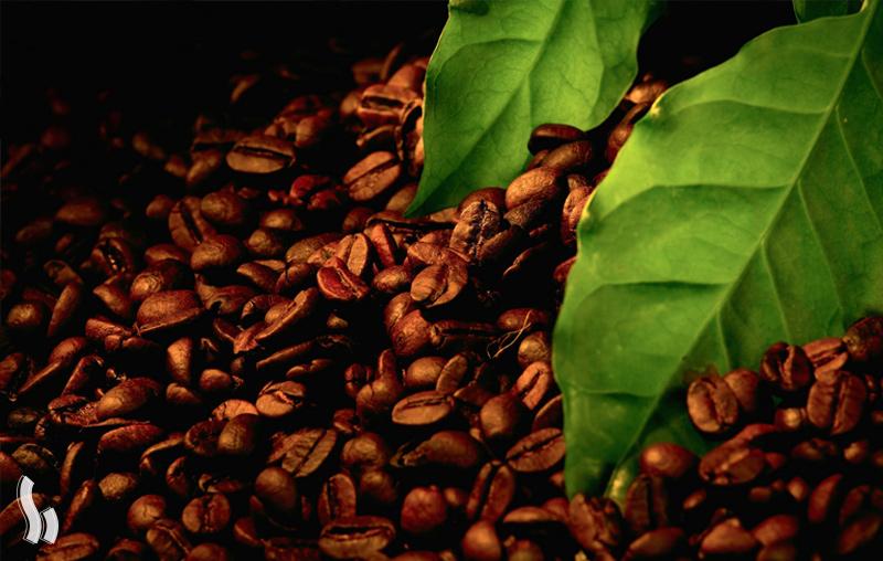 ارزانترین قهوه دنیا